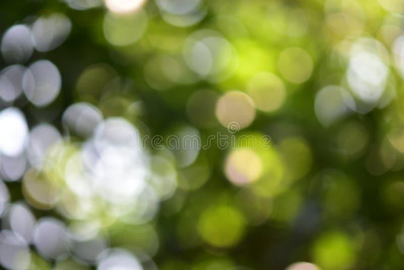Bokeh背景 免版税库存图片