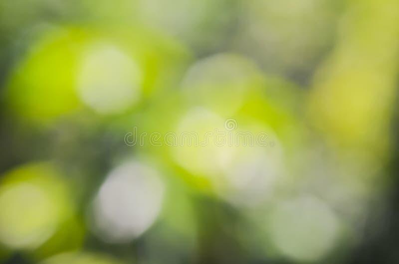 Bokeh природы с запачканной предпосылкой стоковое фото rf
