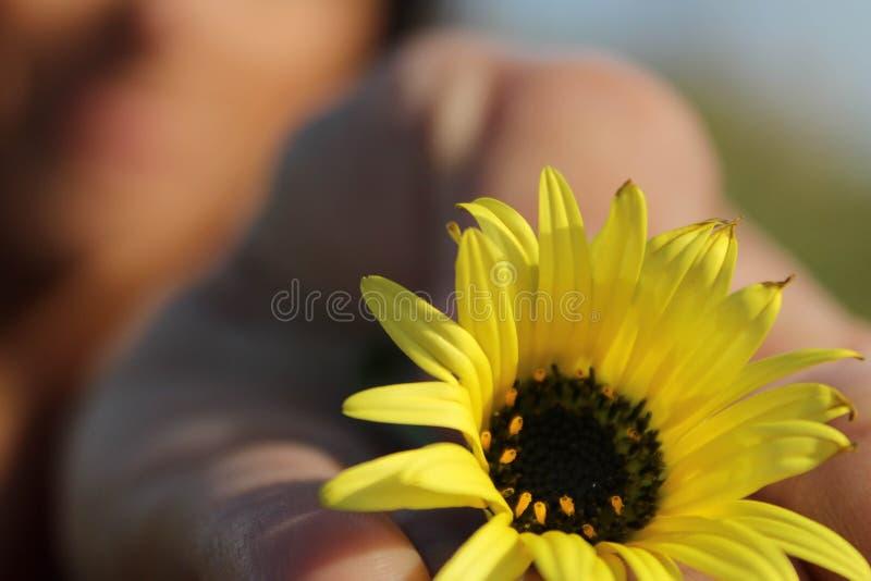 Bokeh ενός κοριτσιού με ένα κίτρινο λουλούδι στο χέρι της στοκ εικόνα