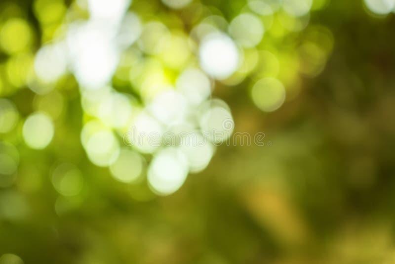 Bokeh Abstrakcjonistyczny naturalny tło zdjęcia royalty free