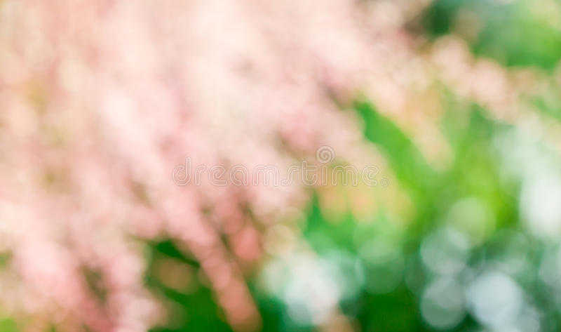 Download Bokeh Background stock image. Image of texture, green - 32155267