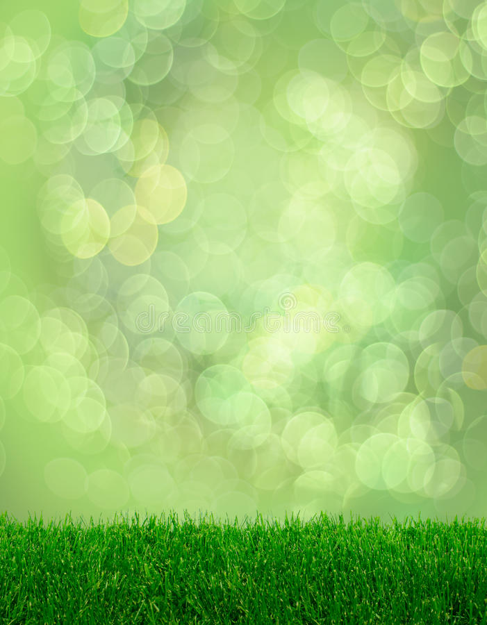 Bokeh d'imagination de source d'herbe verte photographie stock
