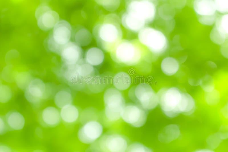 Bokeh da luz natural no sumário verde do fundo imagens de stock