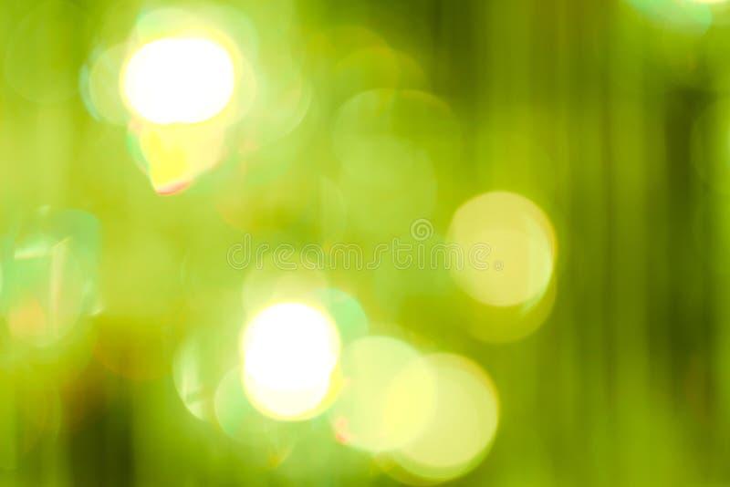Bokeh de forêt naturelle images stock