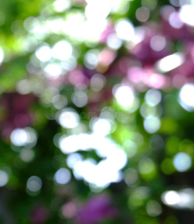 Download Bokeh de nature photo stock. Image du abstrait, nature - 56476690