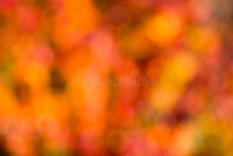 Bokeh del otoño. imagen de archivo