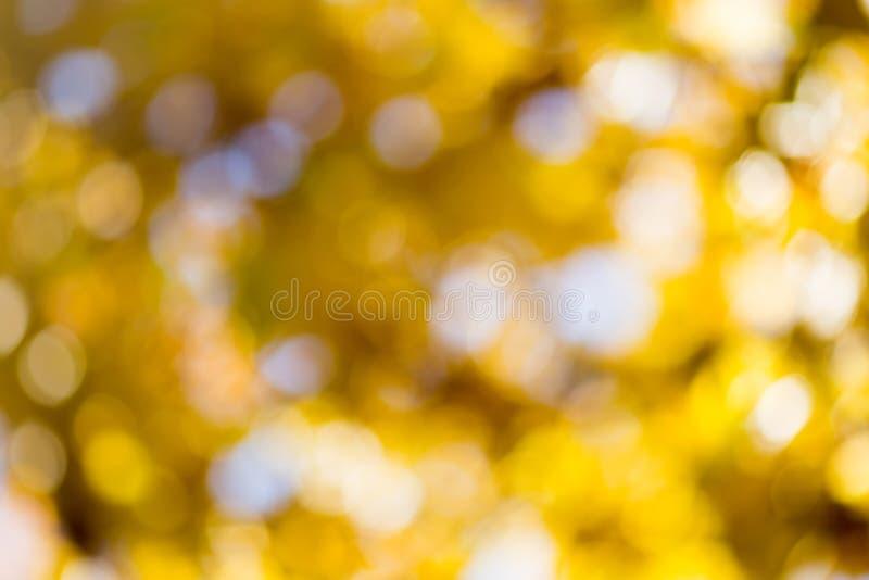 Bokeh del otoño fotografía de archivo