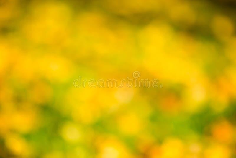 Bokeh del otoño imagen de archivo libre de regalías