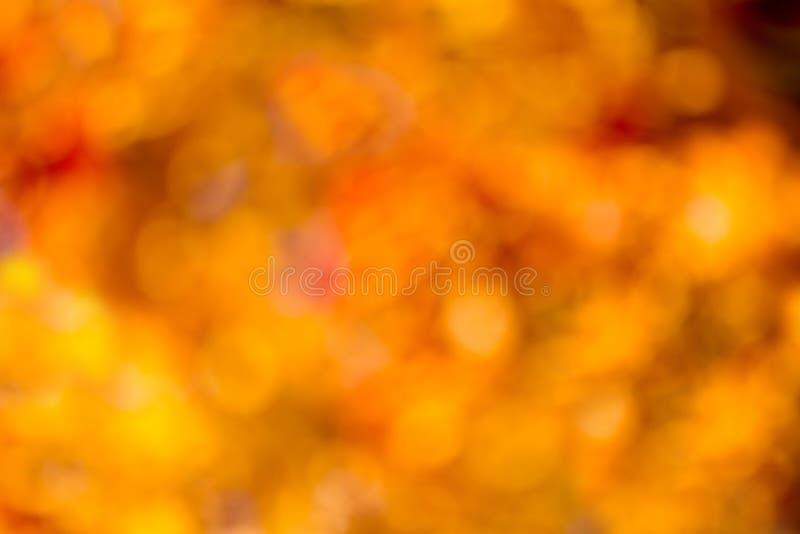 Bokeh di autunno. fotografie stock
