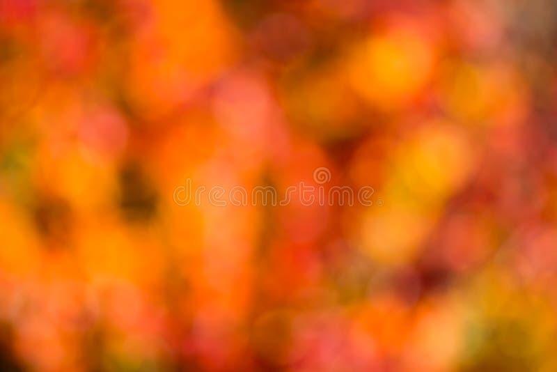 Bokeh di autunno. immagine stock