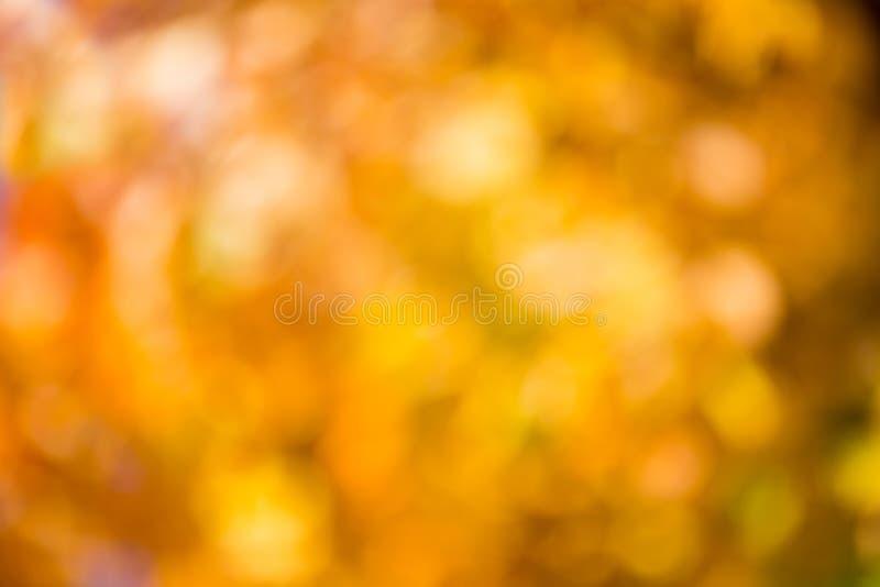 Bokeh di autunno. fotografia stock