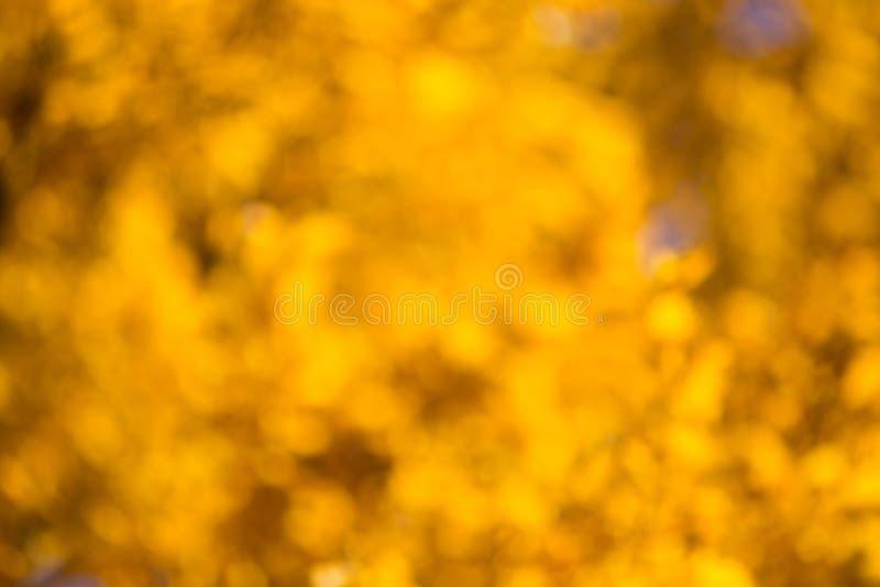 Bokeh di autunno fotografie stock libere da diritti