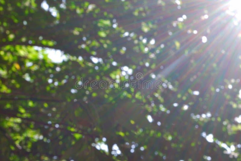 Bokeh et flou photographie stock libre de droits