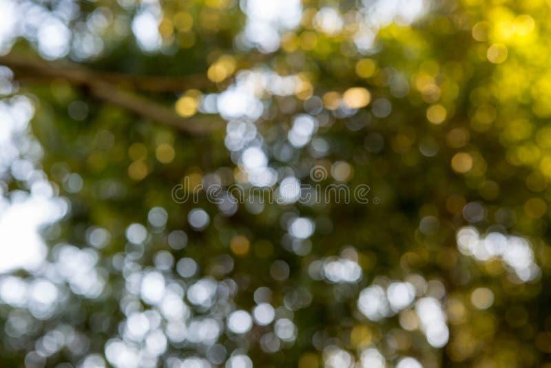 Bokeh Hintergrund lizenzfreie stockfotos
