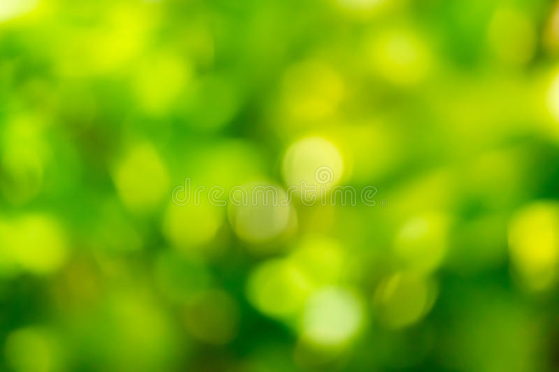 Bokeh of leaves royalty free stock images
