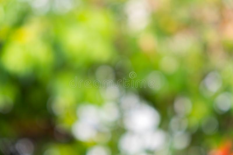 Bokeh light background. The light background survives in the daytime stock images
