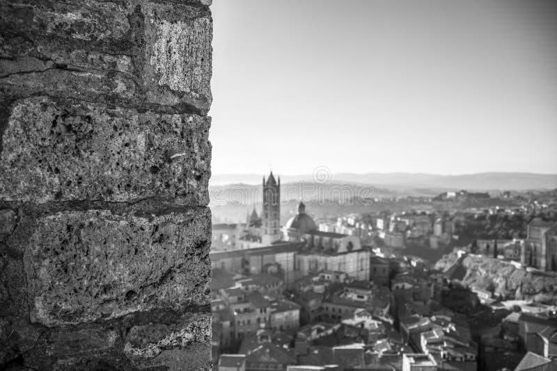 Bokeh Siena royaltyfri fotografi