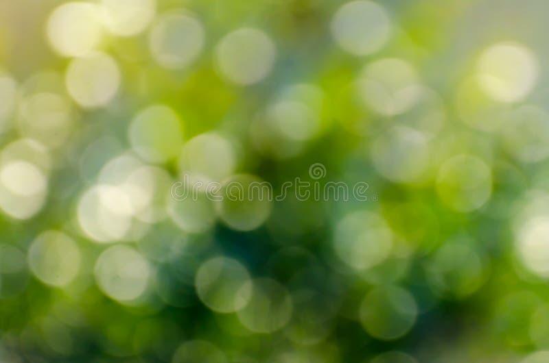 Bokeh-Unschärfegrünhintergrund Wasserreflexion Bokeh-Unschärfe-Grünhintergrund stockfoto