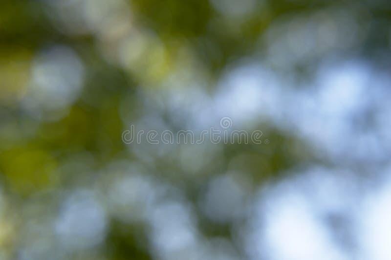 Bokeh verde e blu fotografie stock