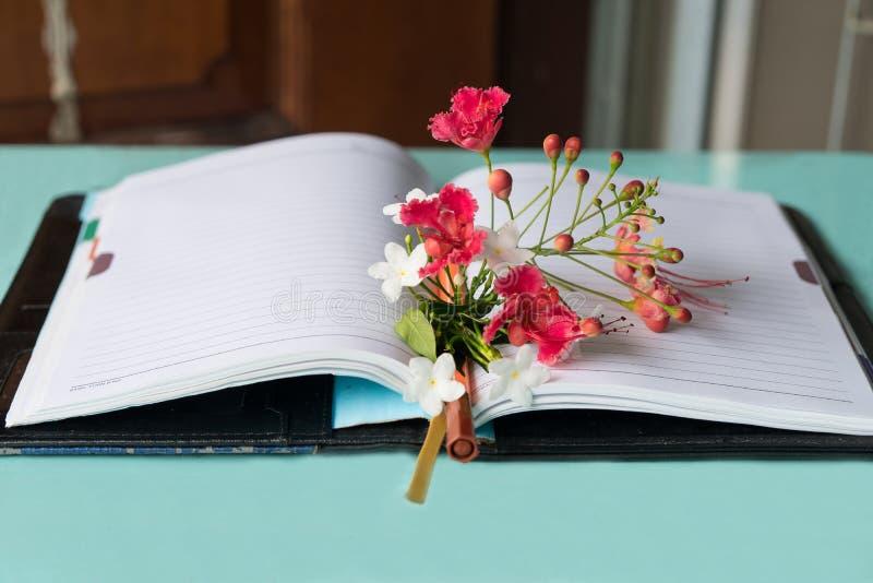 Boken öppnar i den vita bakgrunden arkivbild