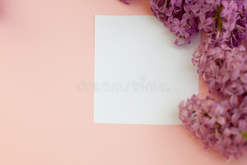 Boken för anmärkningen för lägenheten för den bästa sikten blommar den lekmanna- tomma med liac modellen på en grå bakgrund royaltyfria bilder