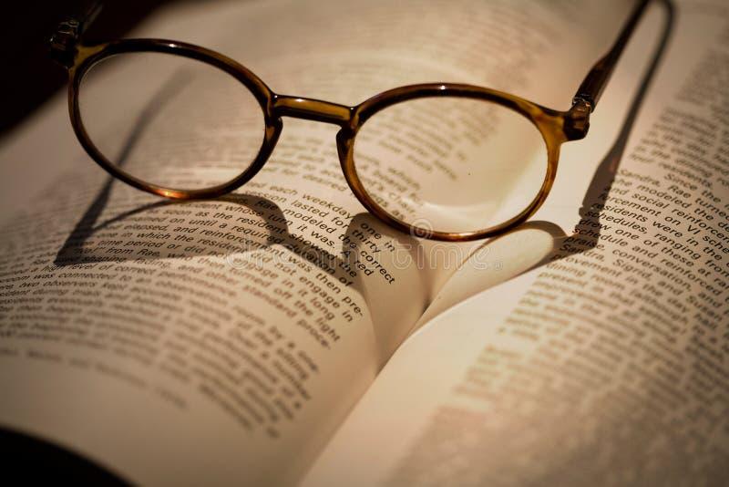 bokförälskelse arkivbild