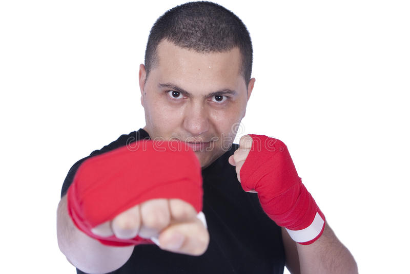 bokser zdjęcia royalty free