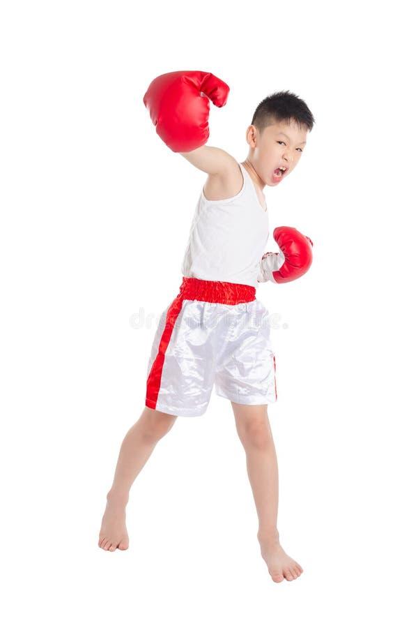 Bokser chłopiec uderza pięścią nad białym tłem zdjęcie royalty free