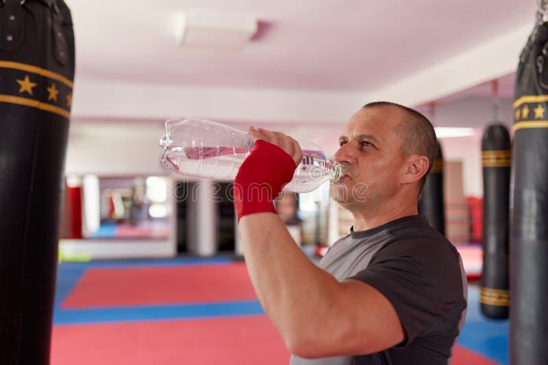 Bokser drinkwater stock foto's