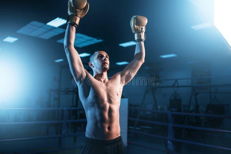 Bokser in handschoenenhanden omhoog op de ring, achtermening stock foto
