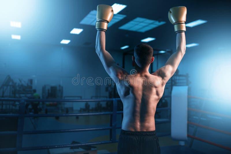 Bokser in handschoenenhanden omhoog op de ring, achtermening royalty-vrije stock fotografie