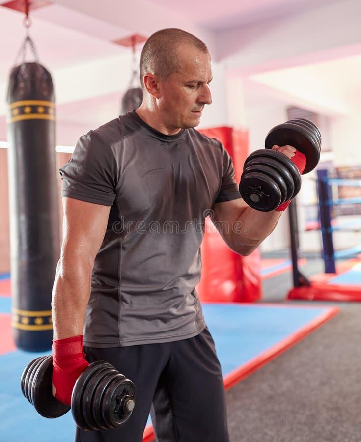 Bokser opleiding met gewichten stock foto's