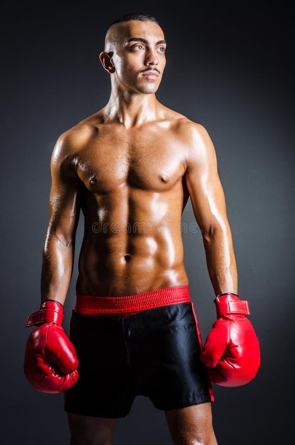 Bokser z czerwonymi rękawiczkami w zmroku zdjęcia royalty free