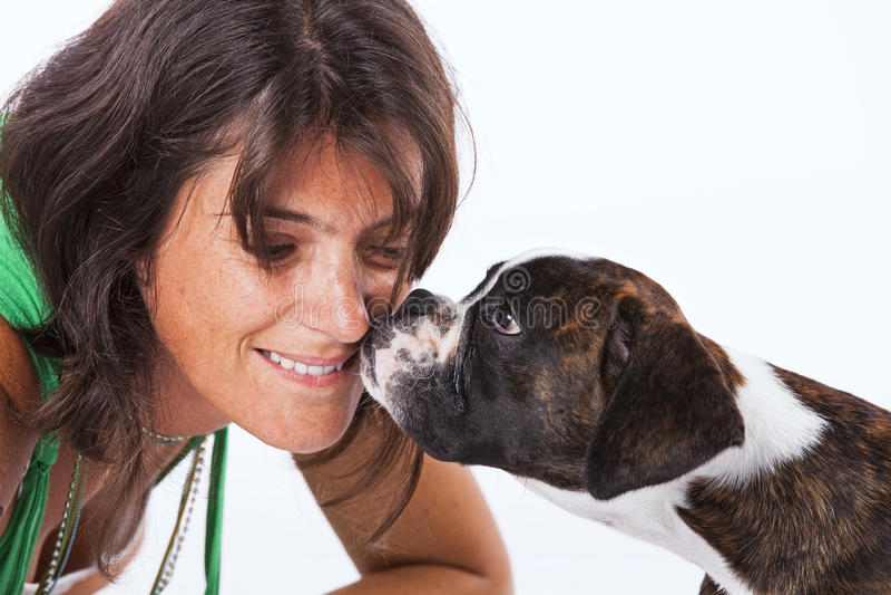 Boksera psi całowanie kobieta obrazy royalty free
