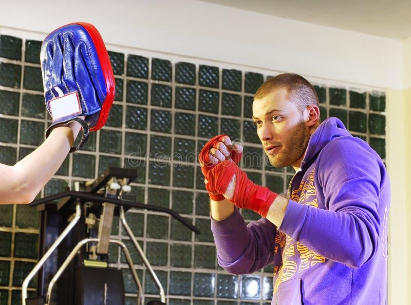 boksera szkolenie zdjęcie royalty free