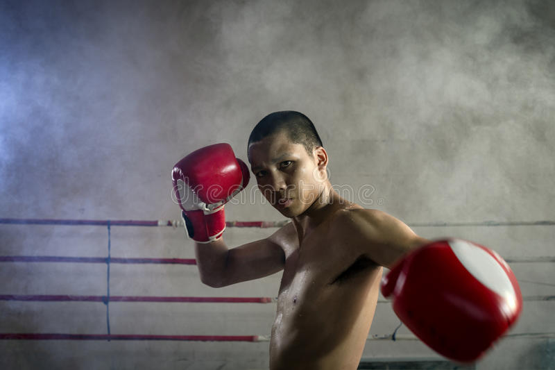 Bokseractie Professionele Muay Thai royalty-vrije stock afbeelding