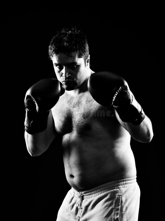 Bokserski bokser zdjęcia stock