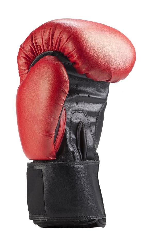 bokserskie rękawiczki obraz royalty free