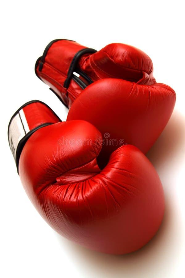 bokserskie rękawiczki fotografia royalty free