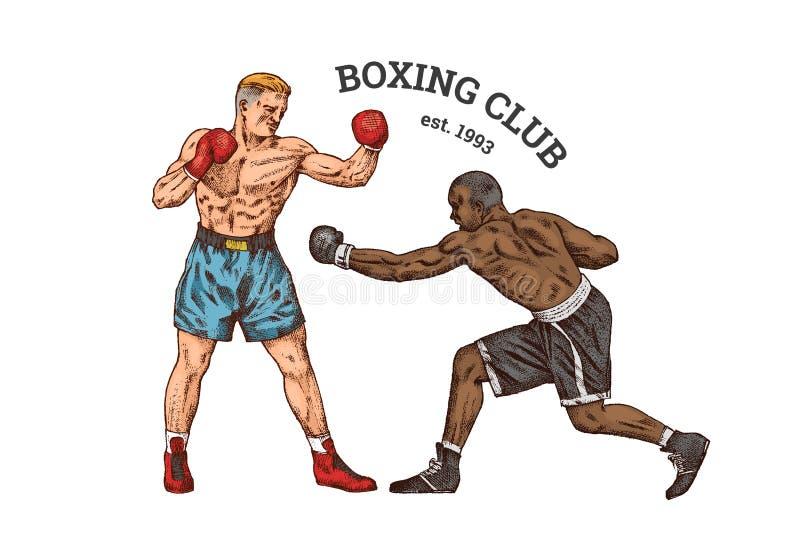 Boksery trenują Sportów silnych mężczyzn walka Rocznika monochromu ilustracja ręka patroszona royalty ilustracja
