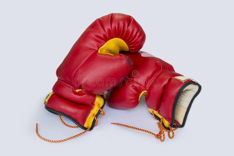 Bokshandschoen stock afbeelding