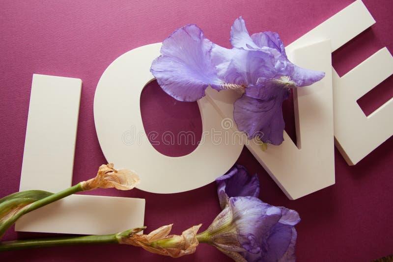 Bokstäver ÄLSKAR med irisblommor arkivbilder