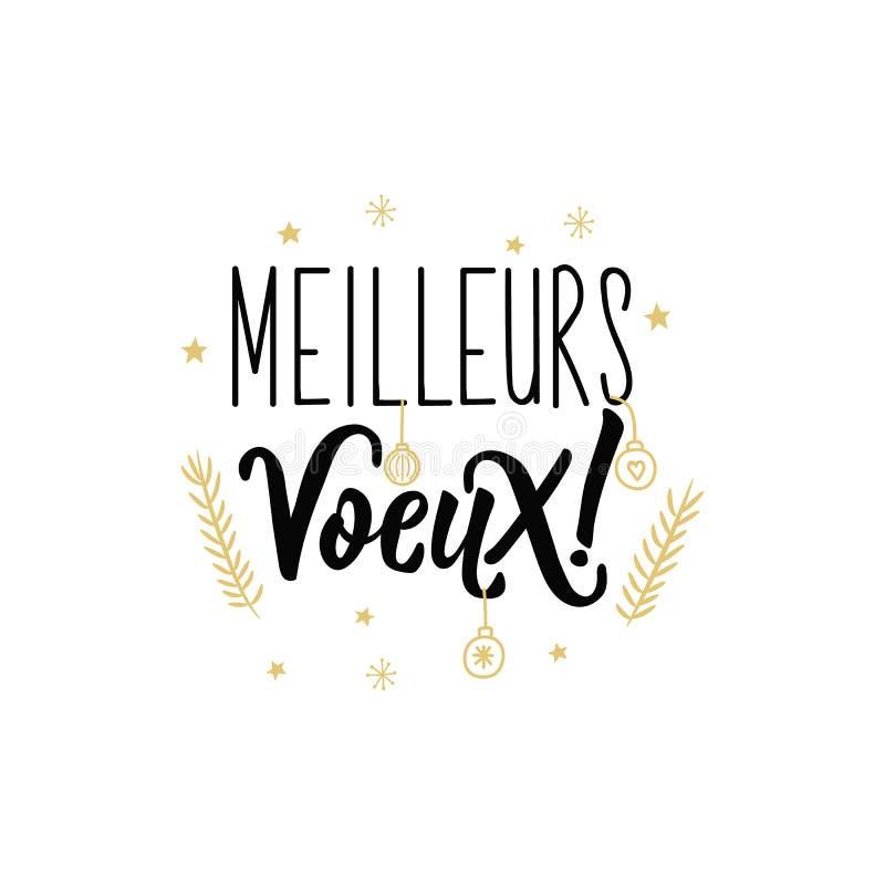 bokstäver Fransk text: Gratulationer Meilleures voeux royaltyfri illustrationer