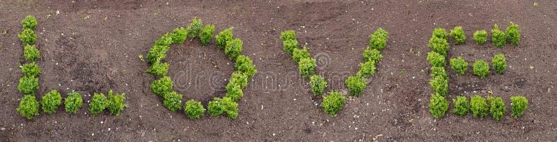 Bokstäver som göras av bosatta växter som bildar ordförälskelsen arkivfoton
