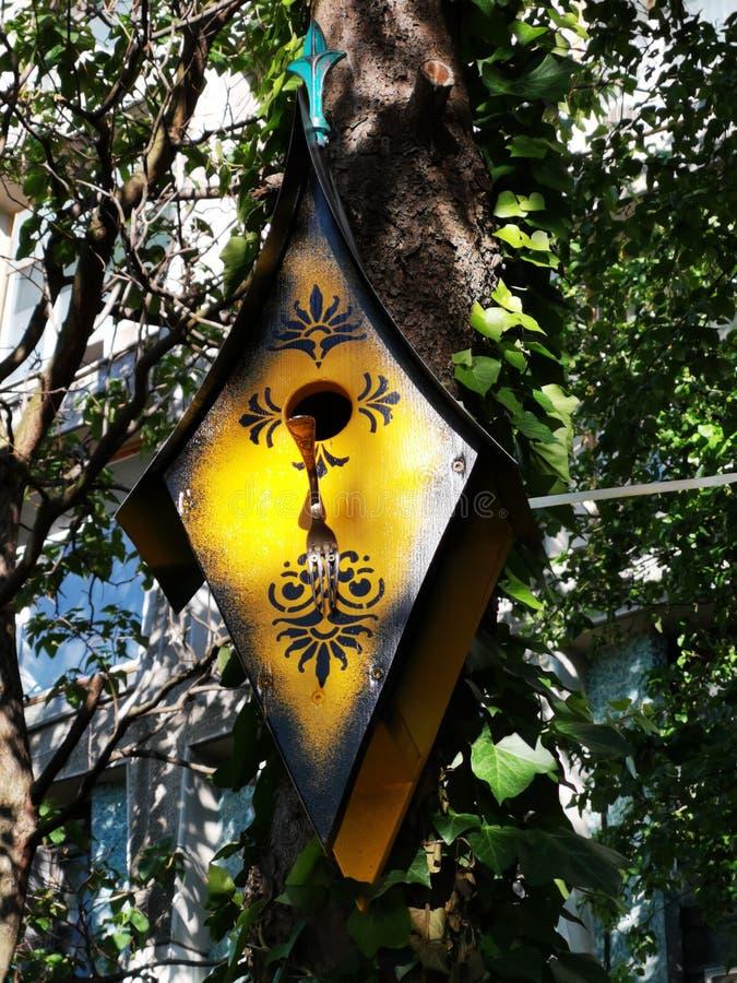 Boksuje dla ptaków na bagażniku drzewo obrazy stock