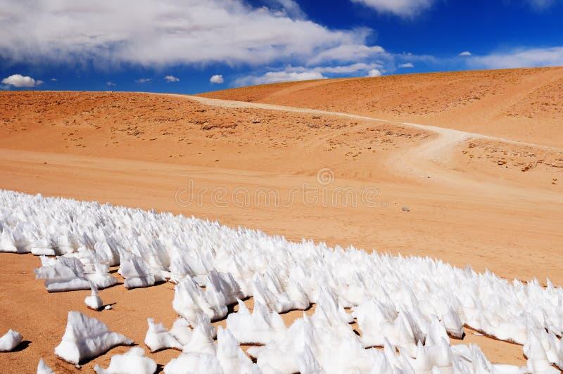 Bolívia imagem de stock
