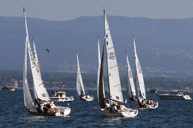 Bol D'Or sailing race on Lake Geneva. royalty free stock images