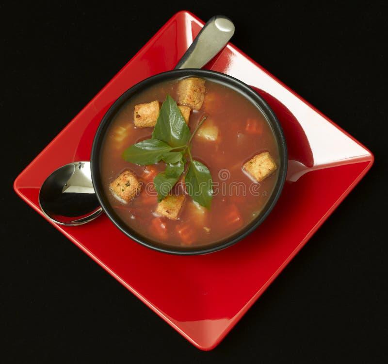 Bol de potage frais chaud d'Italien de Minestrone photos libres de droits