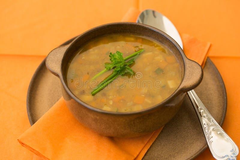 Bol de soupe à lentille avec les légumes et le persil photos stock