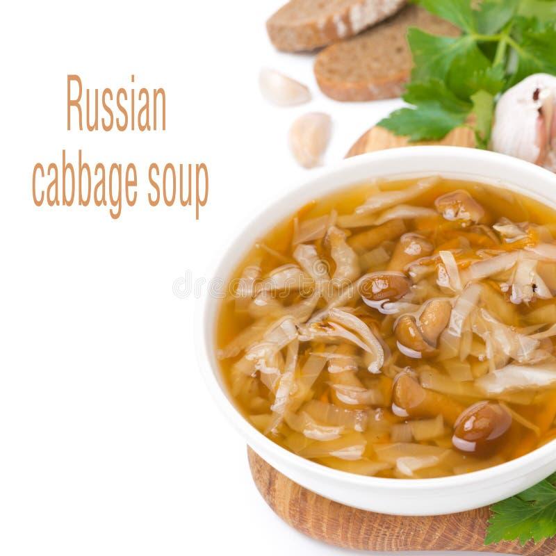 Bol de soupe russe traditionnelle à chou (shchi) photo libre de droits